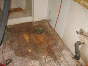 Dry Rot Bathroom