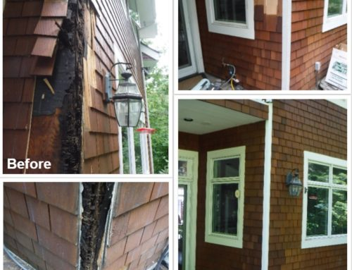 Portland Siding Repairs, Roofing Repairs, and Dry Rot Repairs