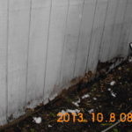 siding and dry rot