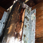 dry rot repair interior dry rot on wooden roofing beam