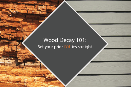 Wood Decay 101 Set Your Prior Rot Ies Straight