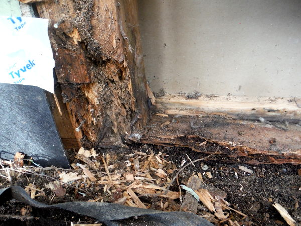 A dry rot repair in Seattle, Washington by SFW Construction LLC.