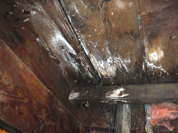Seattle home with dry rot - SFW Construction LLC