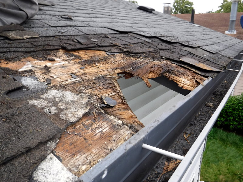Rot damage under roofing in Seattle, Washington. SFW Construction LLC.