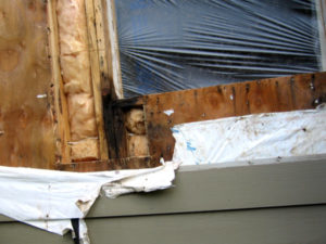 Window leak repair in Seattle, Washington. SFW Construction LLC.