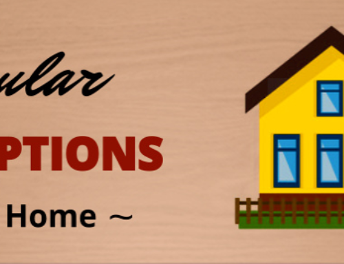 Five Popular Siding Options For Your Home [Infographic]