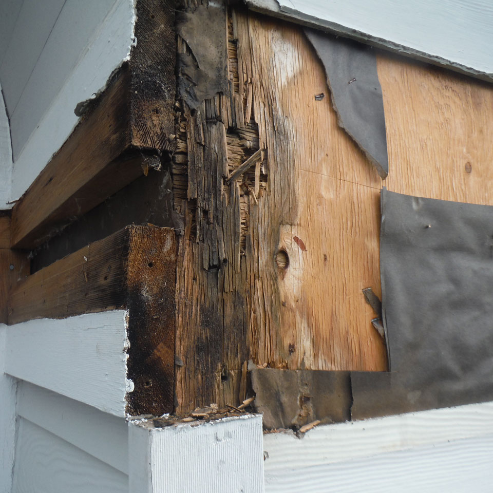 Snoqualmie Dry Rot