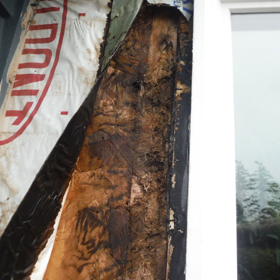 Woodinville Dry Rot