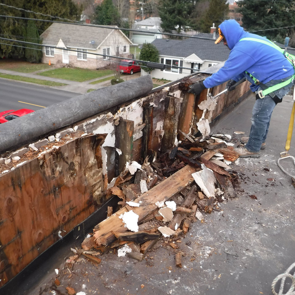 Puyallup Dry Rot