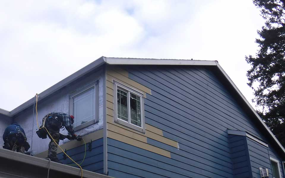 Targeted Siding and Window Repair