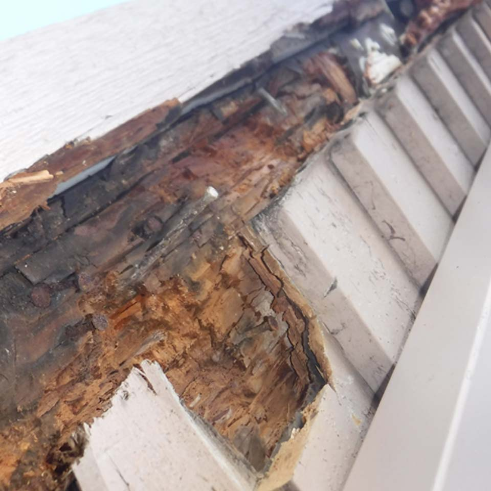 Dry Rot Discovered On Post