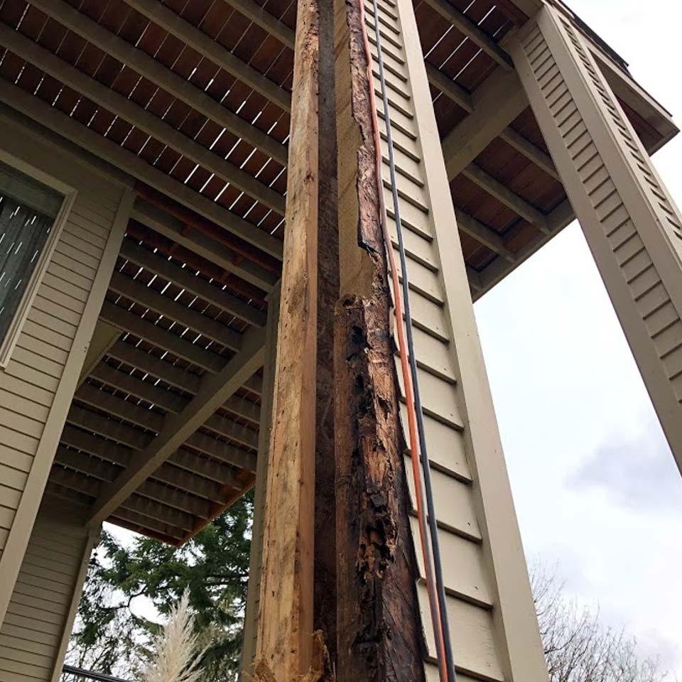 Dry Rot Discovered On Deck Post