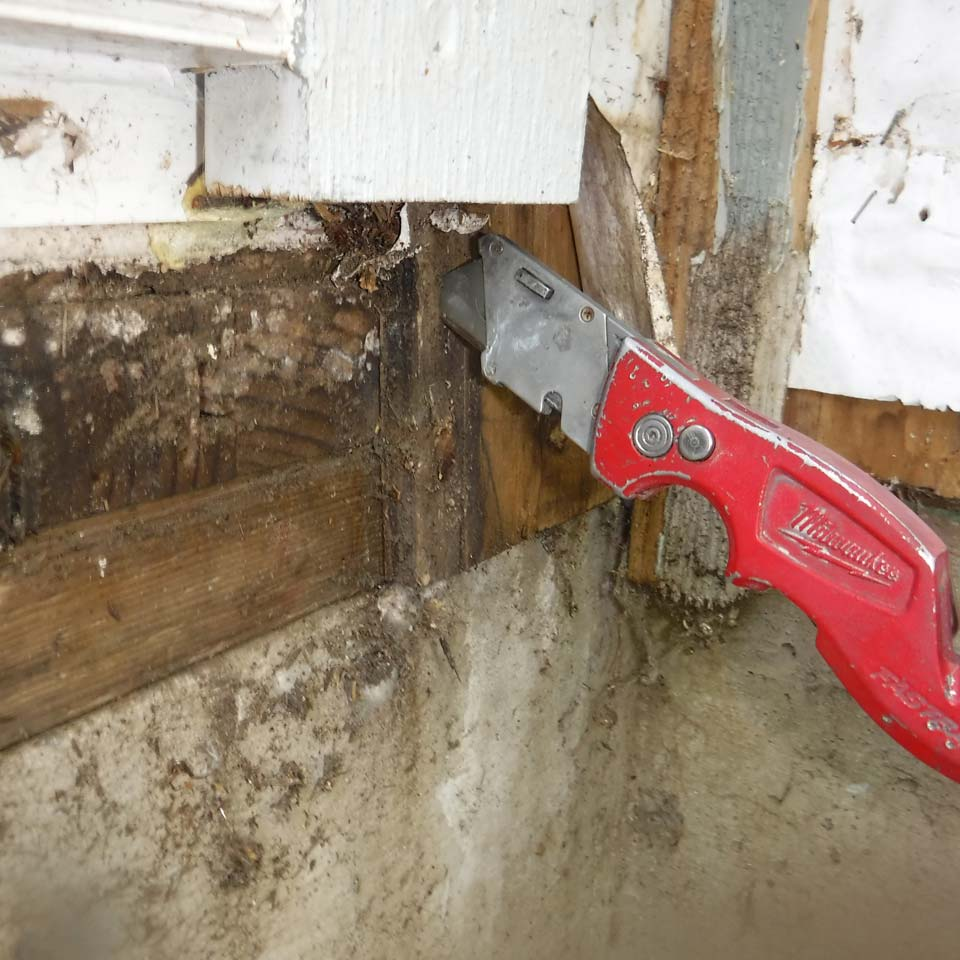 How To Use A Utility Knife To Detect Dry Rot