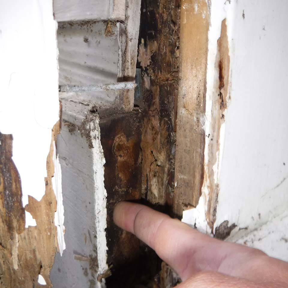 Detect Dry Rot BY Poking A Whole In The Wood