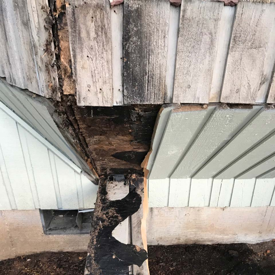 Dry Rot Discovered