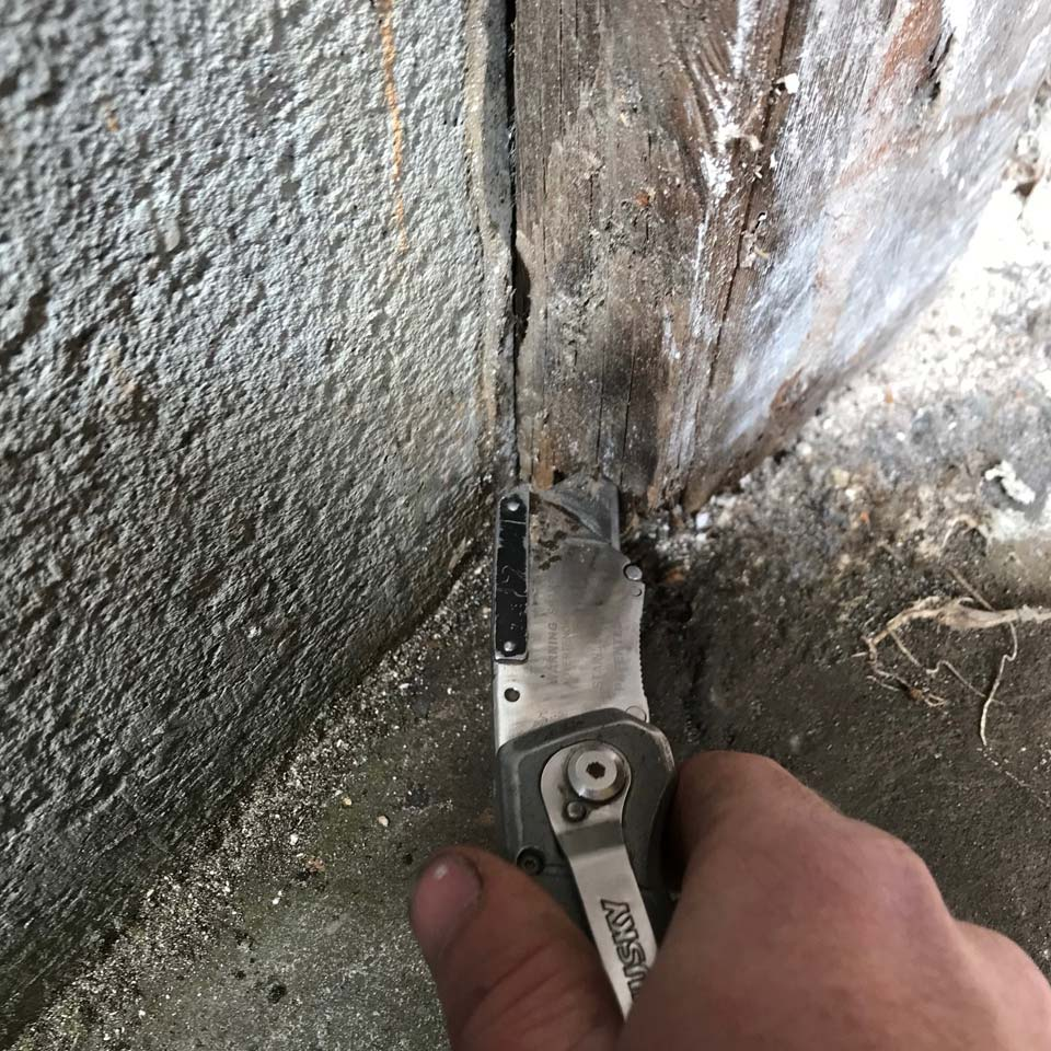 Using A Knife To Determine Dry Rot