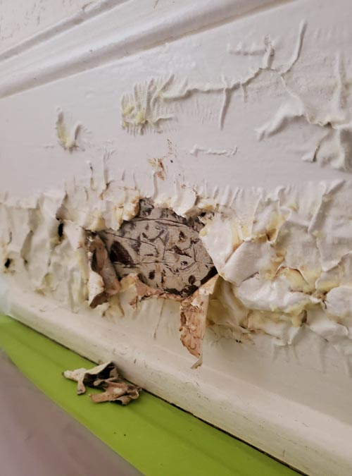 Chemical Paint Stripping, Lead Paint